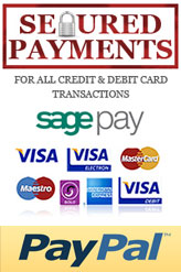 Online Secure Payments